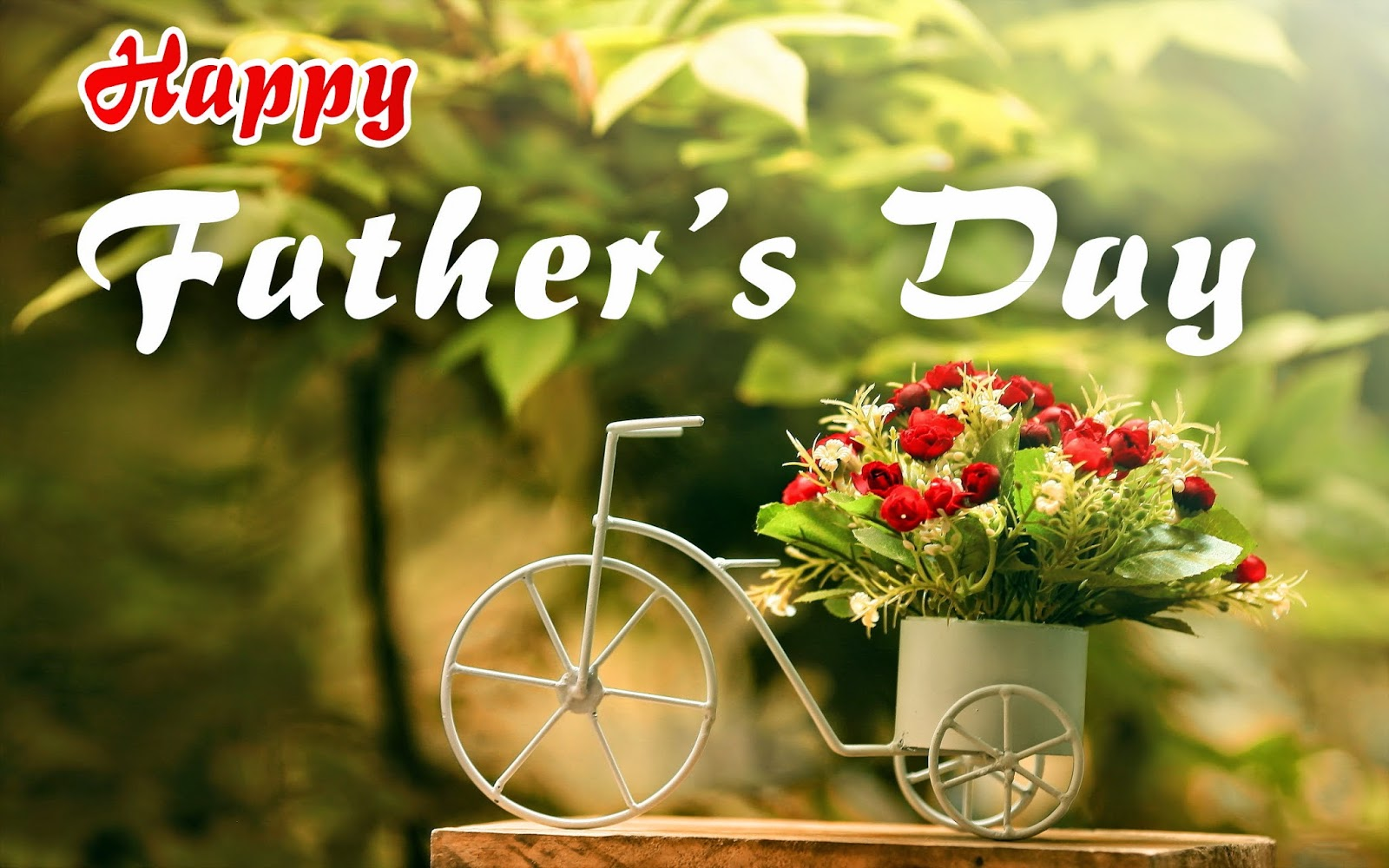 Happy Fathers Day Images 2019: Fathers Day Pictures, Photos
